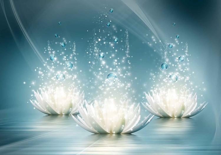 Fotomurale White Lotus Flowers Drops