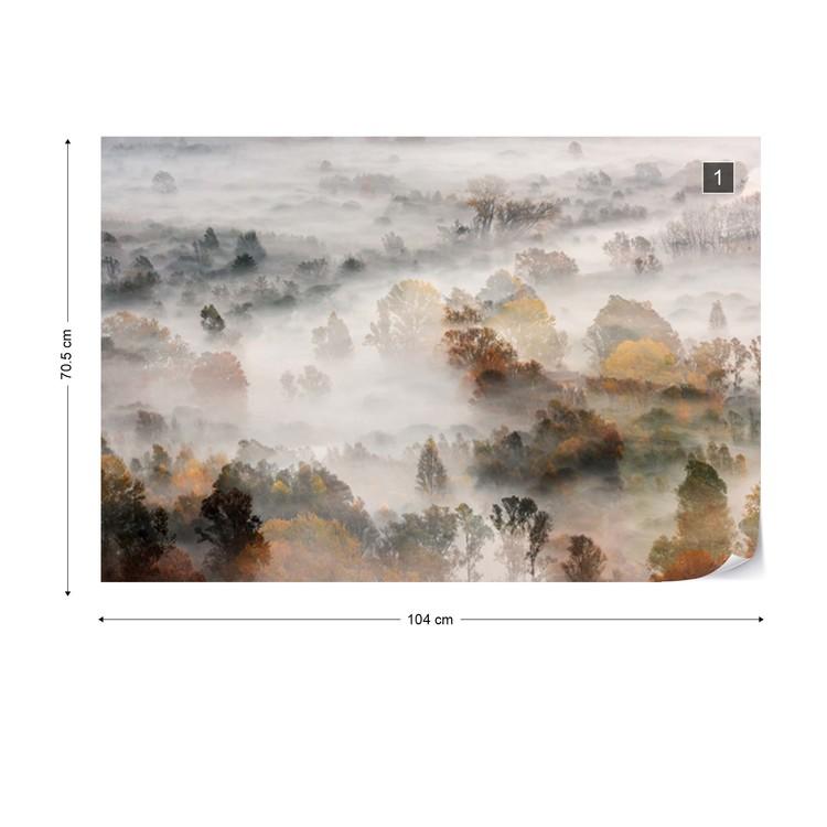 Autumn Colours In The Fog Fototapet