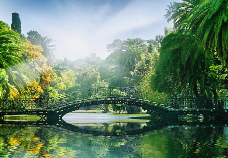 BRIDGE IN THE SUNLIGHT Fototapet