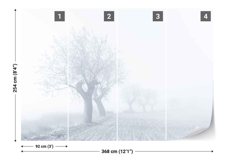 Foggy Sunday Fototapet