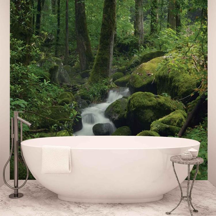 Forest Waterfall Rocks Nature Fototapet