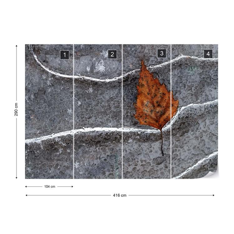 Frozen Leaf Fototapet