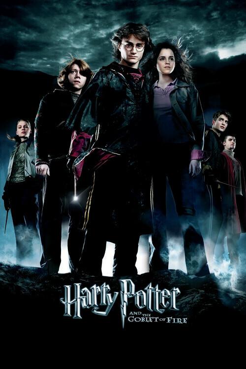 Harry Potter - Ildbegeret Fototapet