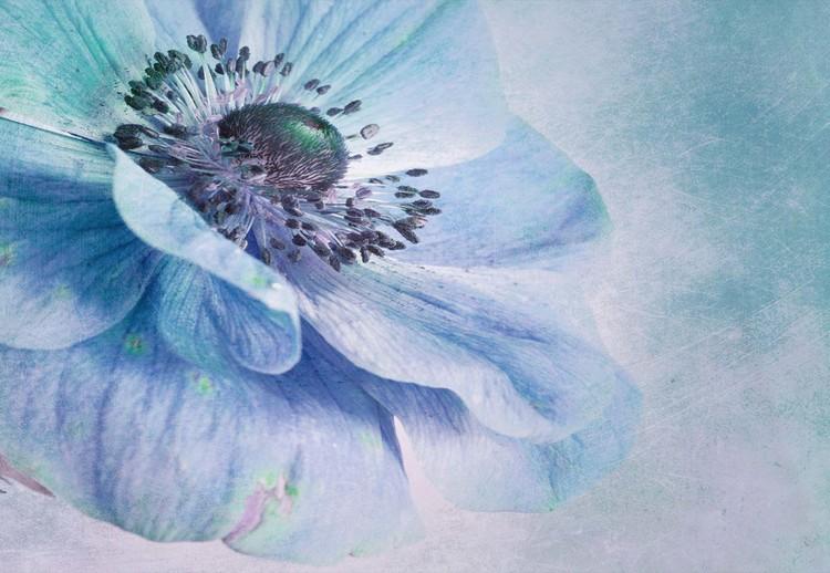 Shades Of Blue Fototapet