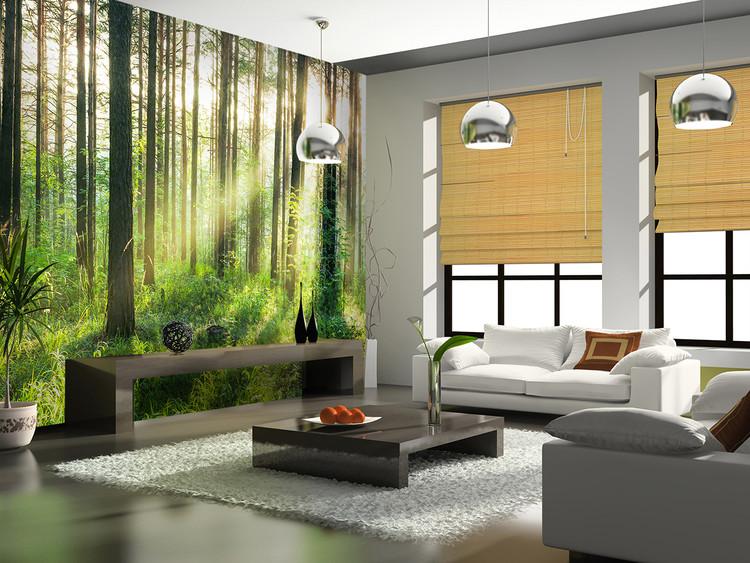 Skog - Sunmbeams Vinyl väggmålningar
