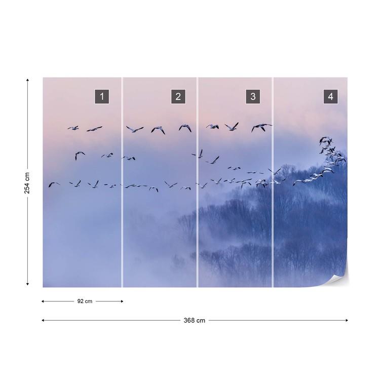 Snow Geese Fototapet
