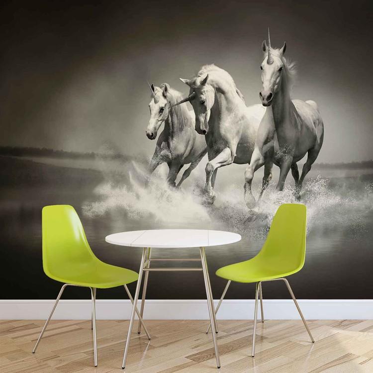 Unicorns Horses Black White Fototapet