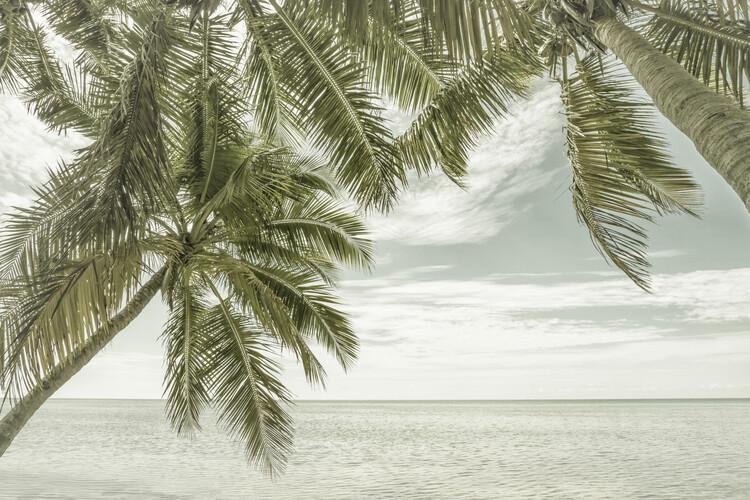 FLORIDA Vintage Oceanview Tapéta, Fotótapéta