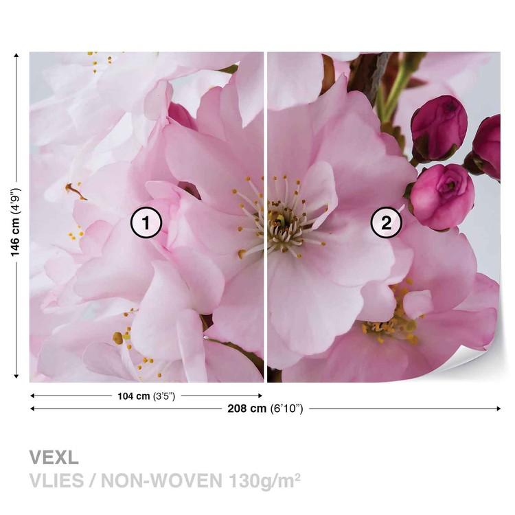 Flowers Blossoms Nature Pink Tapéta, Fotótapéta