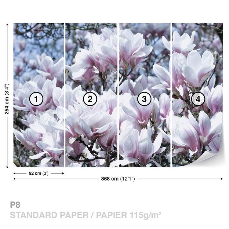 Flowers Magnolia Tapéta, Fotótapéta