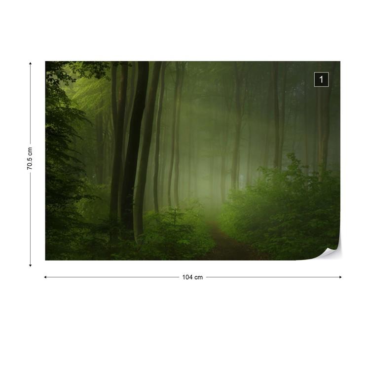 Forest Morning Tapéta, Fotótapéta