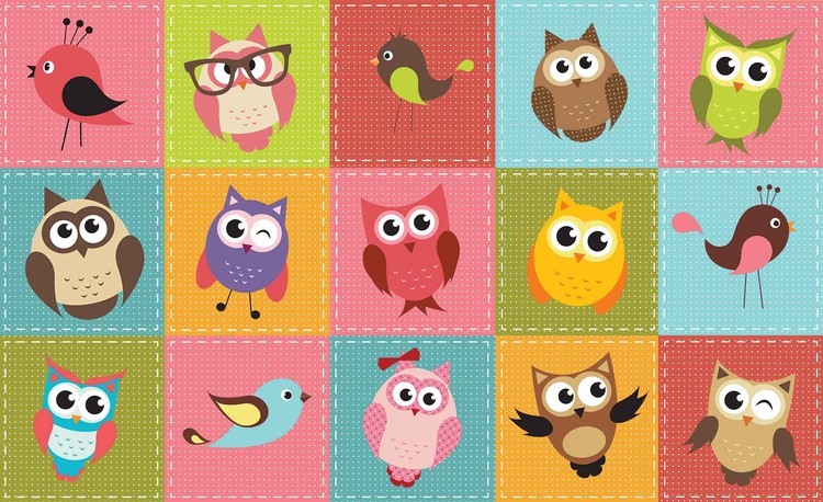 Owls Tapéta, Fotótapéta