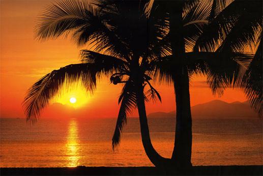PALMY BEACH SUNRISE Fali tapéta