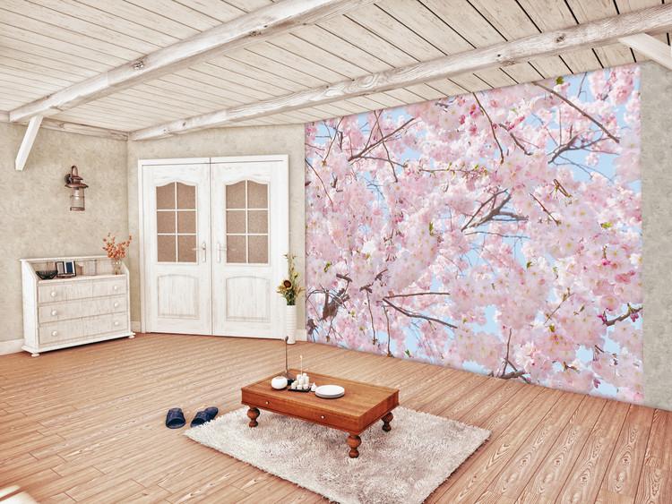 Pink Blossoms Fali tapéta