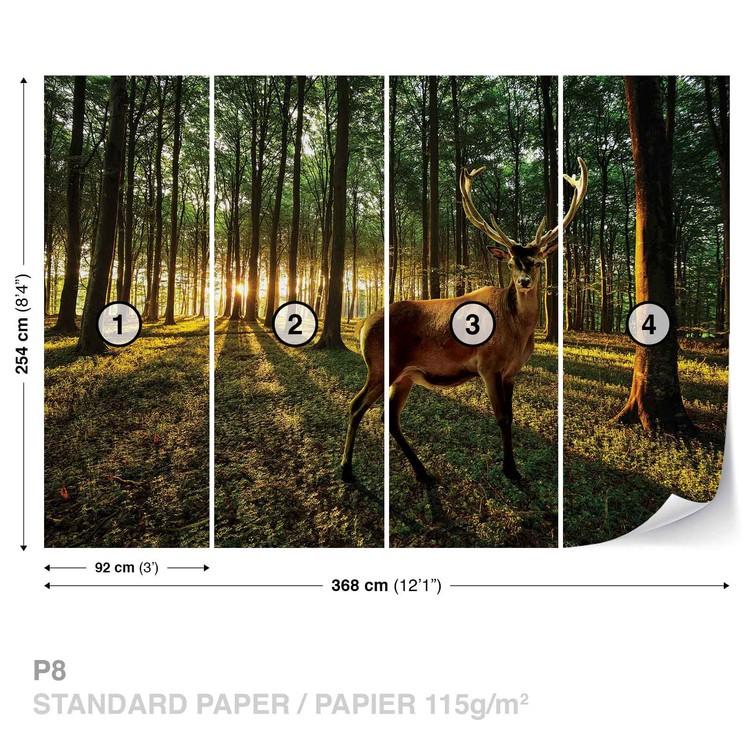 Deer Forest Trees Nature Fototapeta