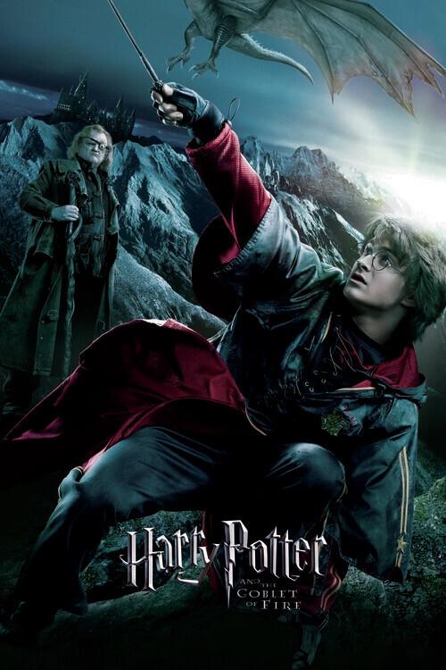 Harry Potter - Plameni Pehar - Harry Fototapeta