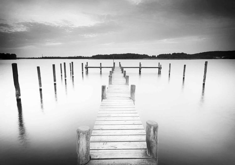 Nature Water Lake Jetty Black White Fototapeta