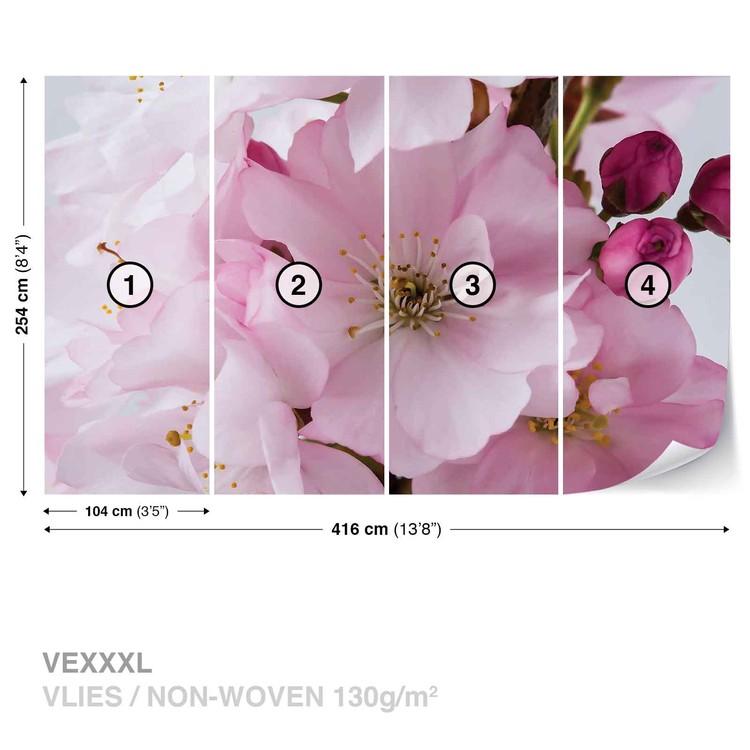 Blumen Blüten Natur Rosa Fototapete