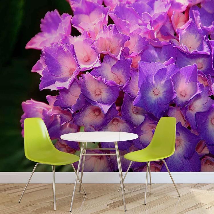 fototapete tapete blumen hortensie lila bei europosters kostenloser versand. Black Bedroom Furniture Sets. Home Design Ideas