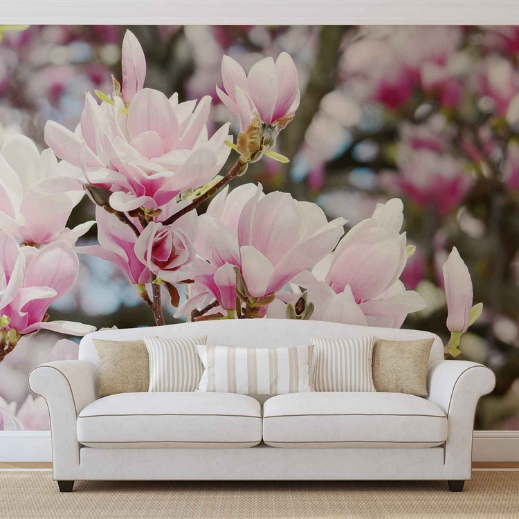 Blumen Magnolien Natur Fototapete