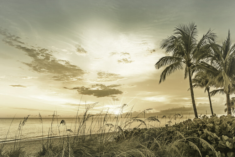 BONITA BEACH Sunset | Vintage Fototapete