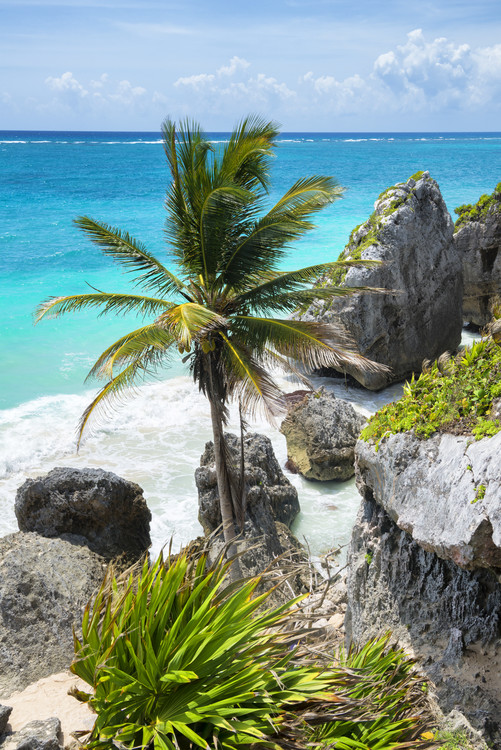 Caribbean Coastline Fototapete