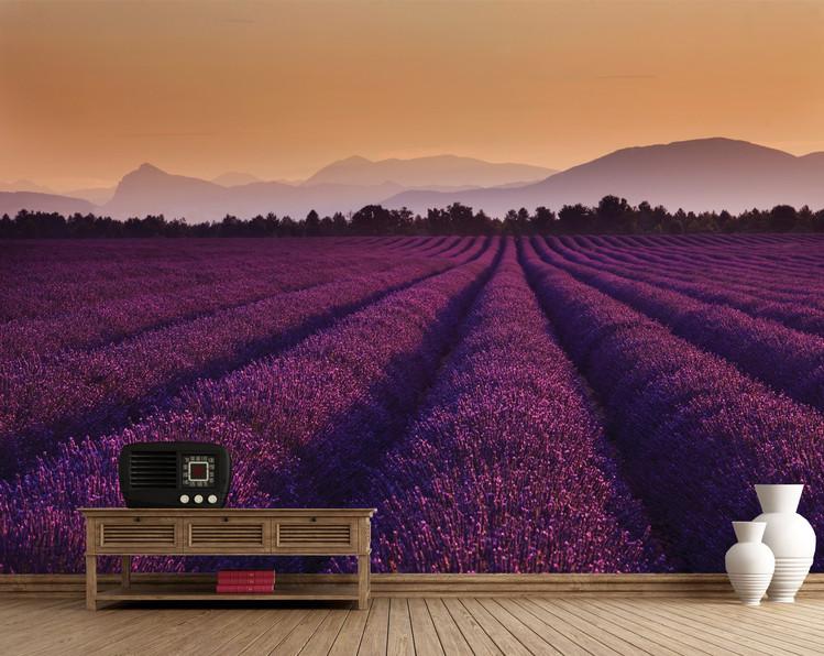 Der Lavendel - Lavender Fields Fototapete