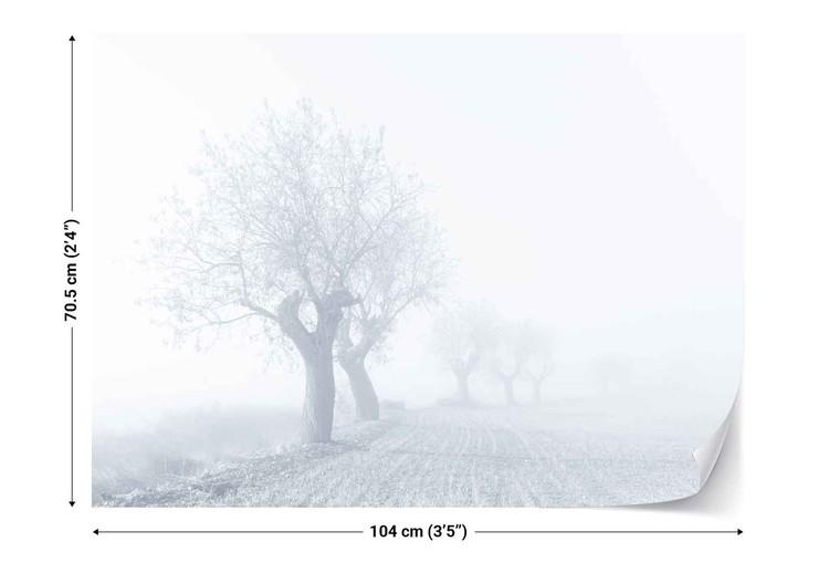 Foggy Sunday Fototapete