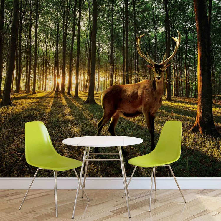 fototapete tapete hirsch wald b ume natur bei europosters kostenloser versand. Black Bedroom Furniture Sets. Home Design Ideas