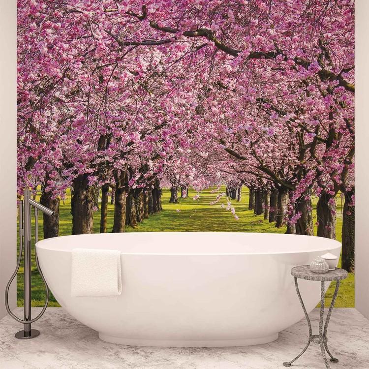 Kirschbäume Garten Natur Fototapete
