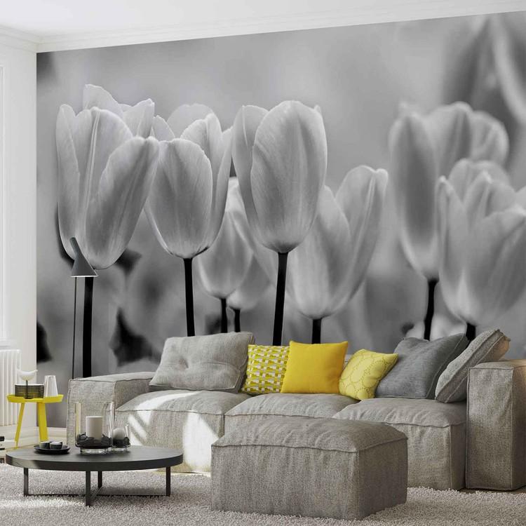 Fototapete, Tapete Tulpen Blumen Schwarz Weiß bei EuroPosters ...