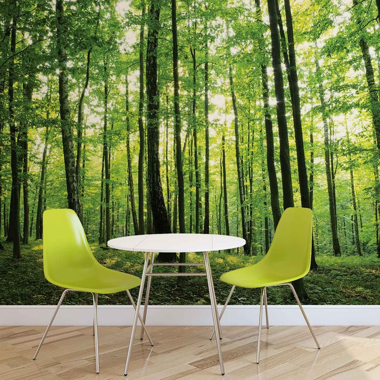 fototapete tapete wald b ume gr n natur bei europosters. Black Bedroom Furniture Sets. Home Design Ideas
