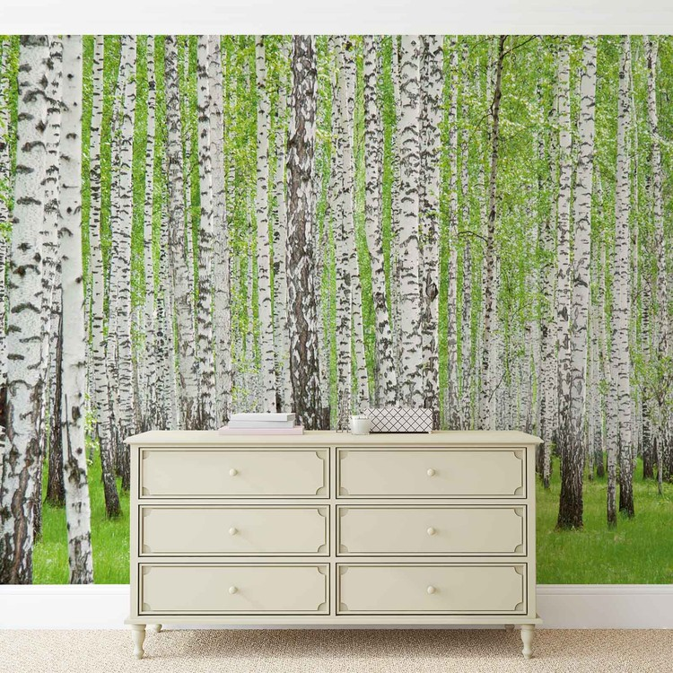 fototapete tapete wald b ume natur bei europosters. Black Bedroom Furniture Sets. Home Design Ideas