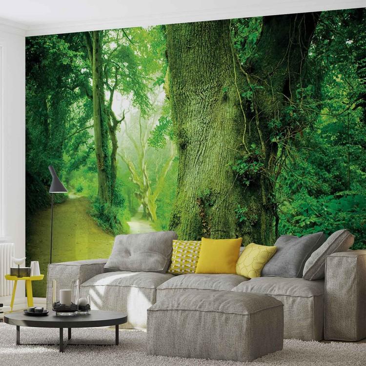fototapete tapete wald natur baum bei europosters kostenloser versand. Black Bedroom Furniture Sets. Home Design Ideas