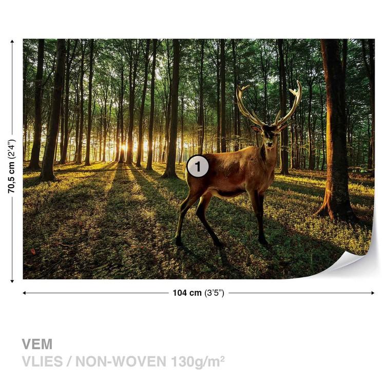 Deer Forest Trees Nature Fototapet