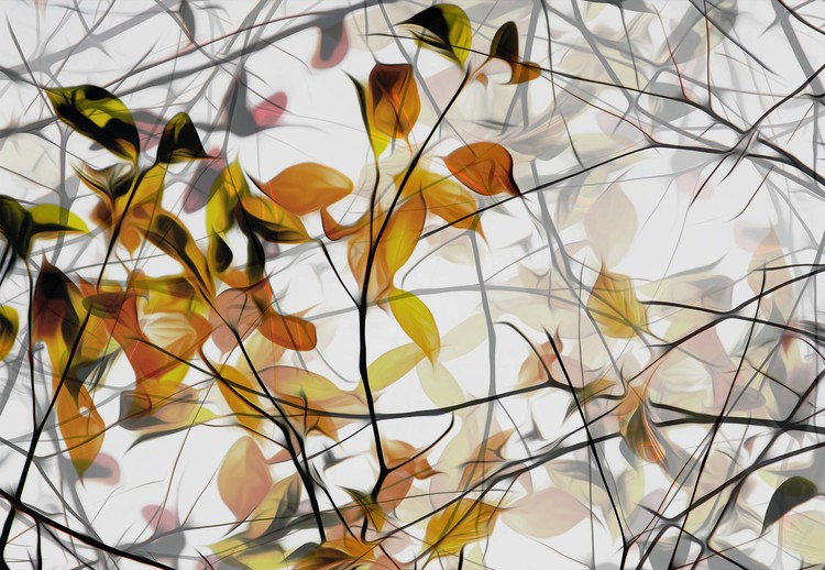 Fototapeta  Autumn Song