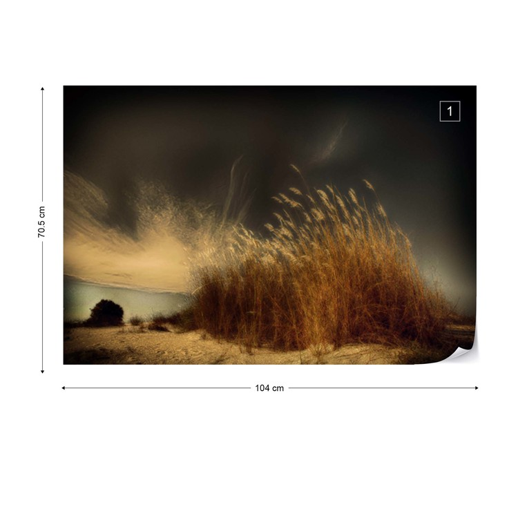 Fototapeta  Beachgrass