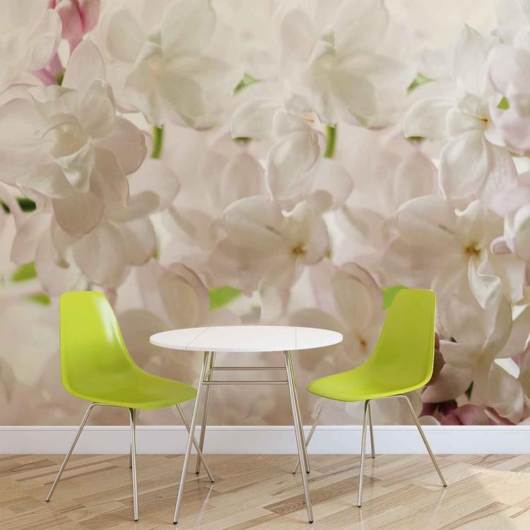 Białe wiosenne kwiaty Fototapeta