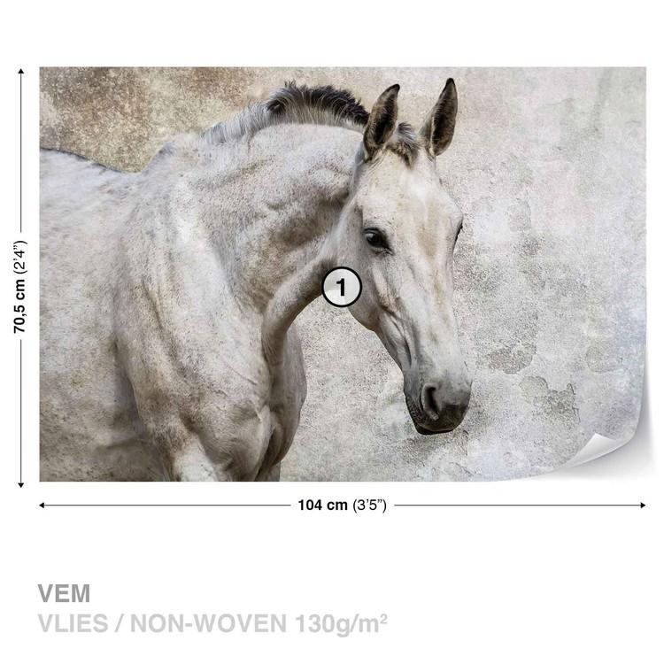 Fototapeta Bílý kůň