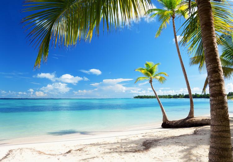 Fototapeta CARIBBEAN SEA
