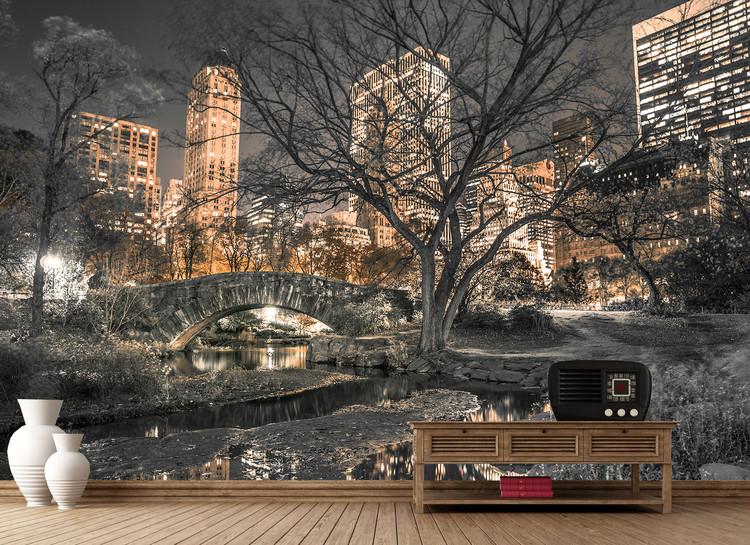 Central Park - Bridge Fototapeta