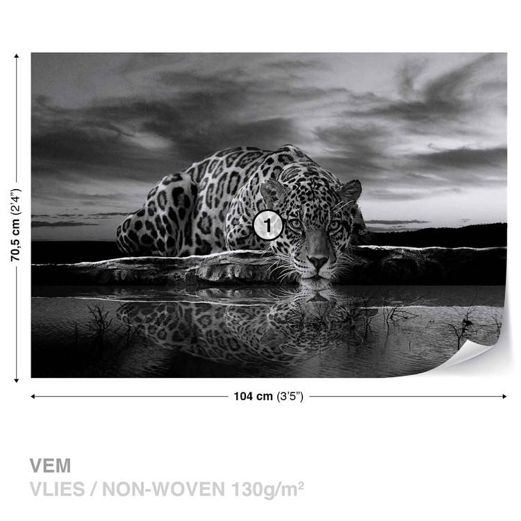 Fototapeta Černobílý leopard