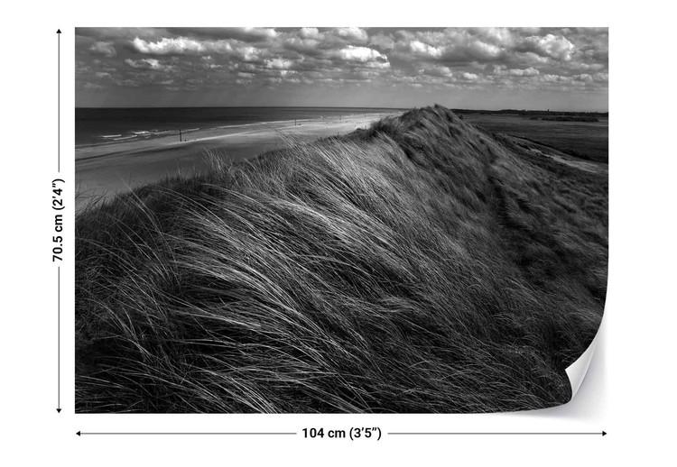 Fototapeta  Dunes Hair