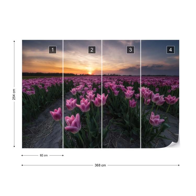 Fototapeta Field Of Tulips