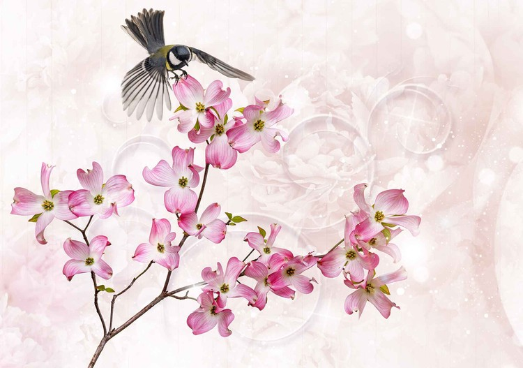 Fototapeta Flowers Bird