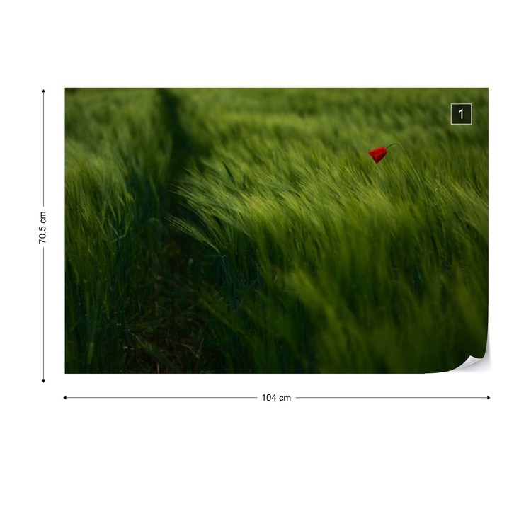 Fototapeta  In The Wind