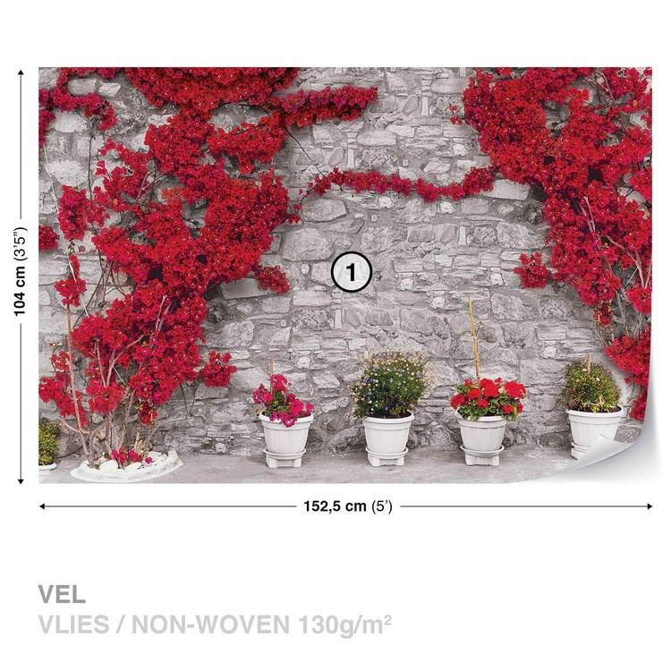 Fototapeta  Kamenná stěna s červenými květinami
