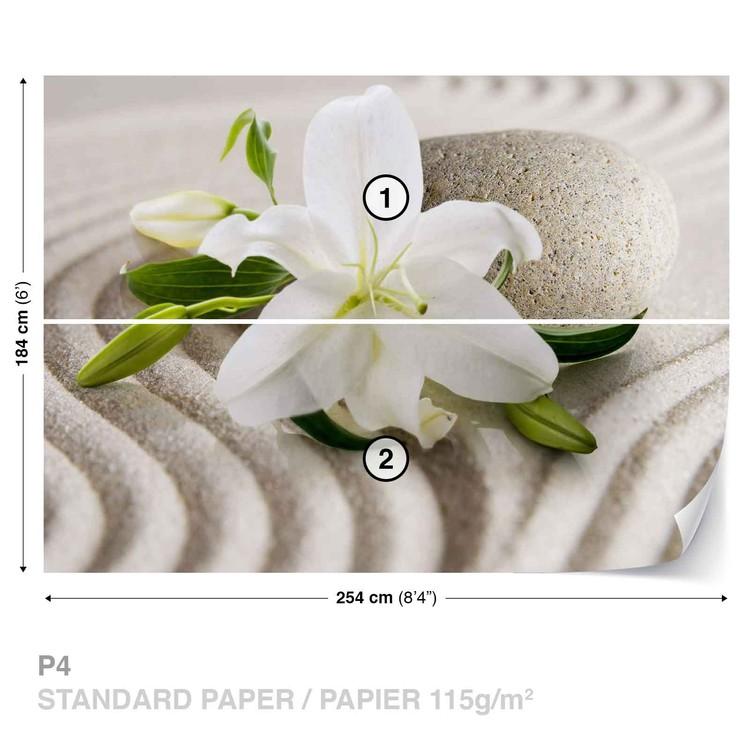 Fototapeta  Květina v písku