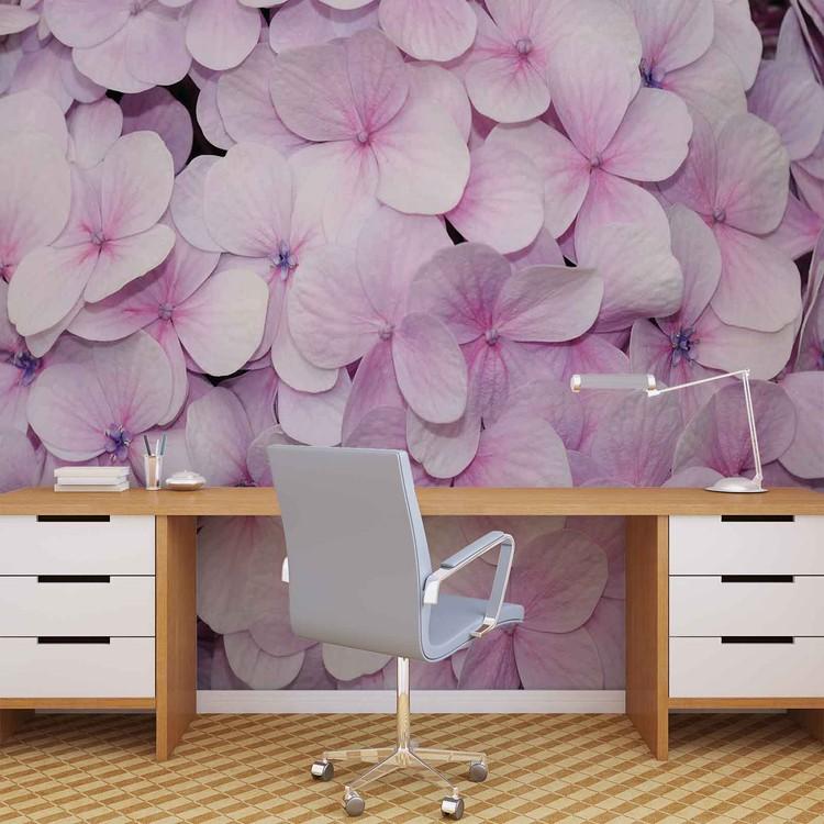 Fototapeta Květinový vzor - fialová