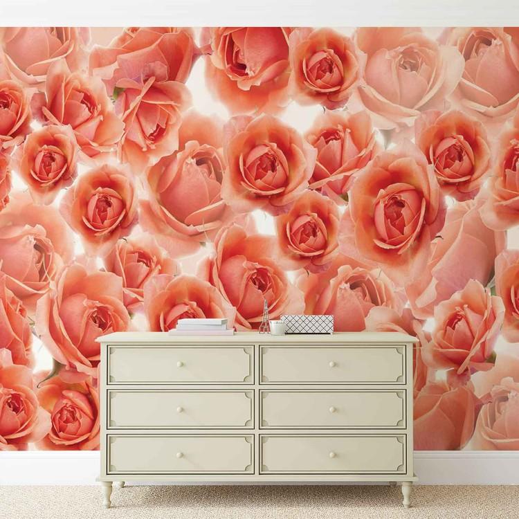 Fototapeta  Květiny - Červená růže